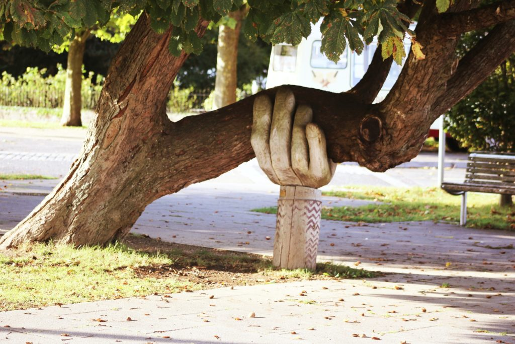 A photo of a tree being held up by aa hand made of wood as a symbol of support for anxiety and depression