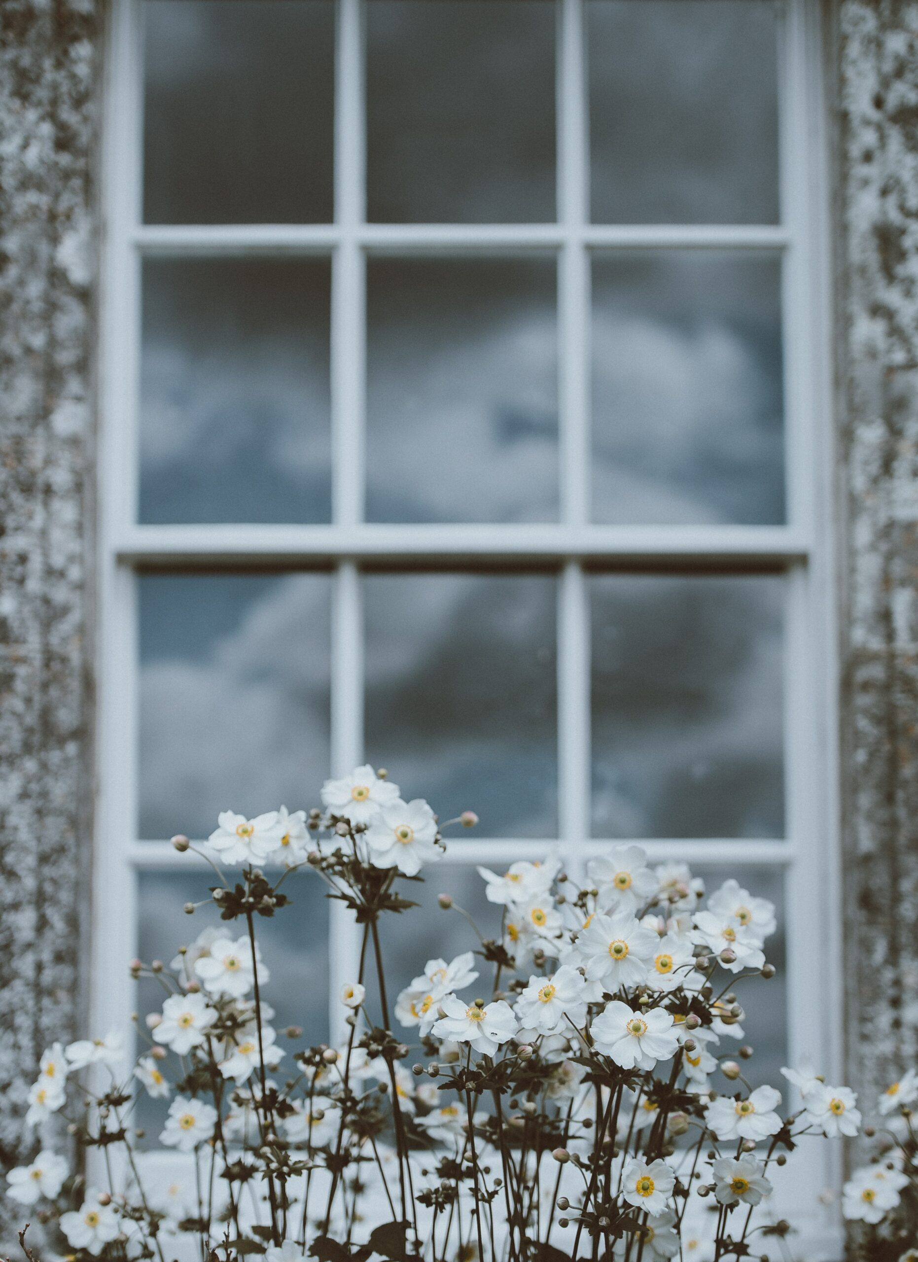 A photo of a window and box, with clouds outside, representing imagery accompanying the question of when it is time to speak with your doctor about medication for anxiety and depression